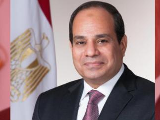 تلبية لدعوة الرئيس السيسي اطلاق مبادرة للتصدي للإعلام المعادي للمصريين